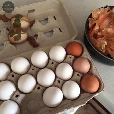 onion skin dye | Halle's Hobbies