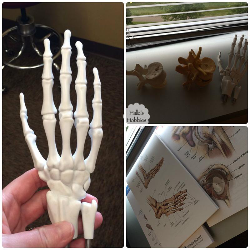 bones-collage