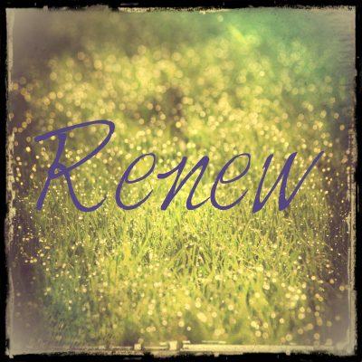 woty-renew